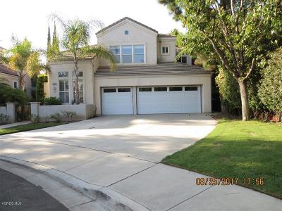 Moorpark Single Family Home For Sale: 11691 Northdale Drive