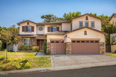 Simi Valley Single Family Home For Sale: 240 Southcrest Place