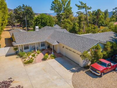 Agoura Hills Single Family Home For Sale: 5520 Fairview Place