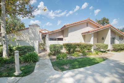 Thousand Oaks Condo/Townhouse For Sale: 2040 Birchdale Court