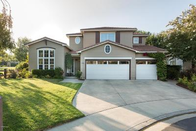 Simi Valley Single Family Home For Sale: 203 Knoll Ridge Road