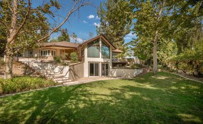 Agoura Hills Single Family Home For Sale: 5918 Chesebro Road
