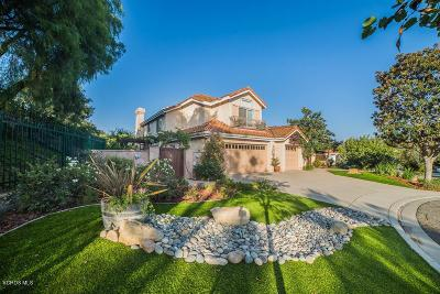 Simi Valley Single Family Home For Sale: 779 Trail Rock Court