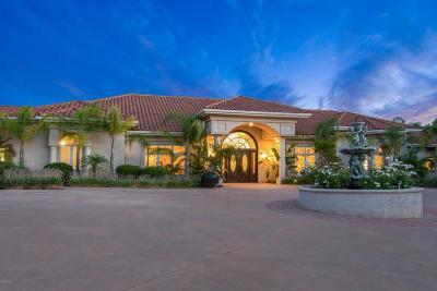 Westlake Village Single Family Home For Sale: 4395 Rayburn Street