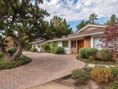 Woodland Hills Single Family Home For Sale: 6151 Woodlake Avenue