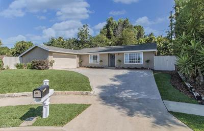 Thousand Oaks Single Family Home For Sale: 1267 Calle Olmo