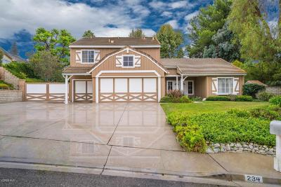 Simi Valley Single Family Home For Sale: 234 Hazelridge Court