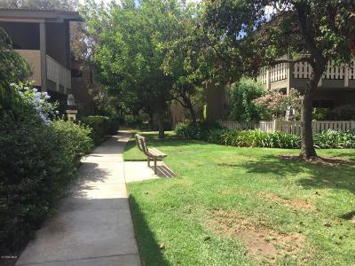 Thousand Oaks Condo/Townhouse For Sale: 769 Birchpark Circle #105