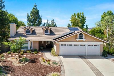 Agoura Hills Single Family Home For Sale: 5603 Middle Crest Drive