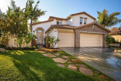 Camarillo Single Family Home For Sale: 1717 San Vito Lane