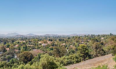 Thousand Oaks Single Family Home For Sale: 581 Lone Oak Drive