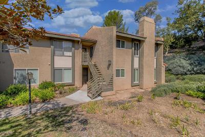 Thousand Oaks Condo/Townhouse For Sale: 463 Arbor Lane Court #203