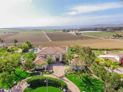 Camarillo Single Family Home For Sale: 1379 Avenida De Aprisa