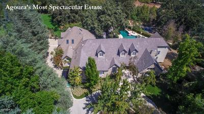 Agoura Hills Single Family Home For Sale: 29105 Old Mill Creek Lane
