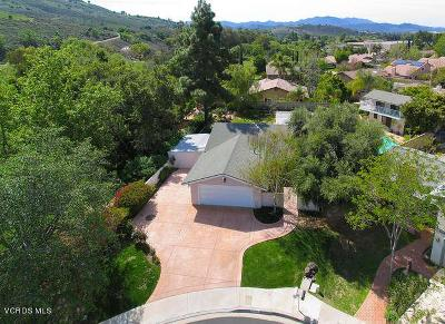 Thousand Oaks Single Family Home For Sale: 2179 Summerpark Court