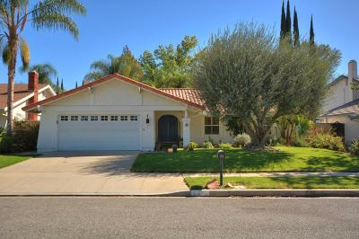 Oak Park Single Family Home For Sale: 30 Locust Avenue