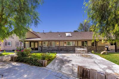 Canyon Country Single Family Home For Sale: 26652 Sand Canyon Road