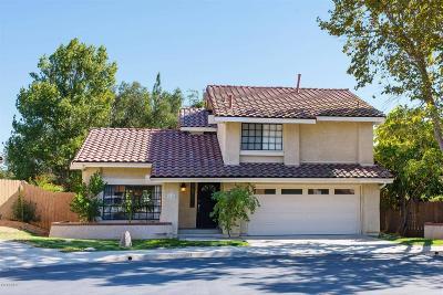 Oak Park Single Family Home For Sale: 6696 Summerhill Court