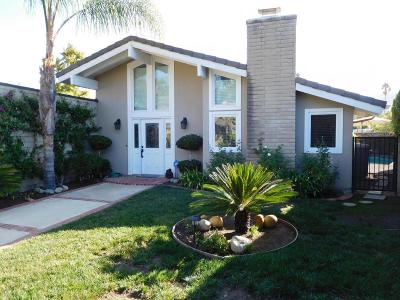 Westlake Village Single Family Home For Sale: 4200 Beaucroft Court