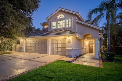 Westlake Village Single Family Home For Sale: 4926 Coyote Wells Circle
