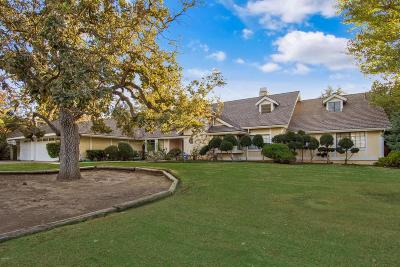 Westlake Village Single Family Home For Sale: 1740 Larkfield Avenue