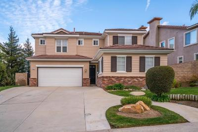 Simi Valley Single Family Home For Sale: 410 Canyon Crest Drive