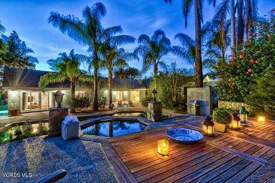 Camarillo Single Family Home For Sale: 603 Via Del Cerro