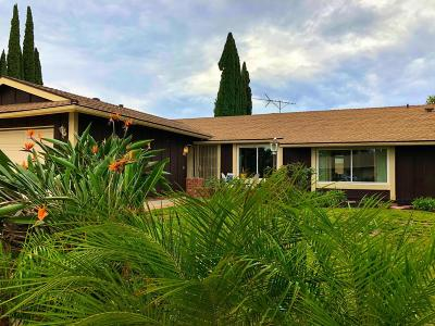 Simi Valley Single Family Home For Sale: 2241 Bigelow Avenue