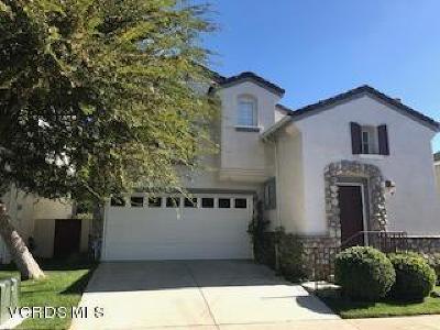 Westlake Village Single Family Home For Sale: 5510 Salerno Drive
