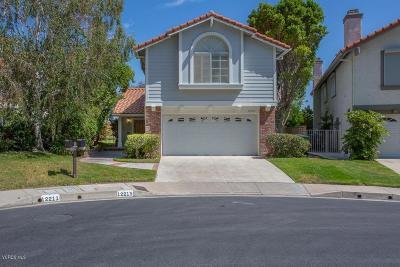 Northridge Single Family Home For Sale: 12215 High View Ridge