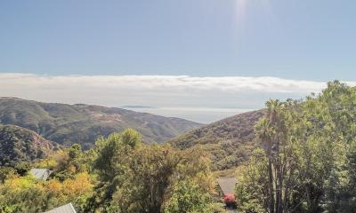 Malibu Single Family Home For Sale: 2117 Las Flores Canyon Road