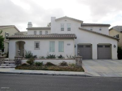 Simi Valley Single Family Home For Sale: 4110 Eagle Flight Drive