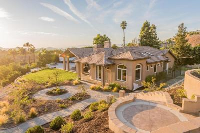 Thousand Oaks Single Family Home For Sale: 904 Chalet Circle