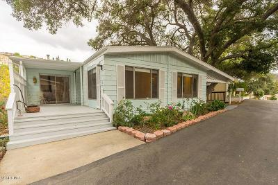 Westlake Village Single Family Home For Sale: 7 Sherwood Drive