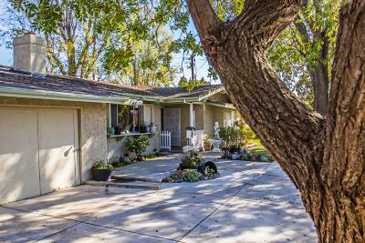 Thousand Oaks Single Family Home For Sale: 212 Encino Vista Drive