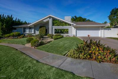 Thousand Oaks Single Family Home For Sale: 337 Judy Circle