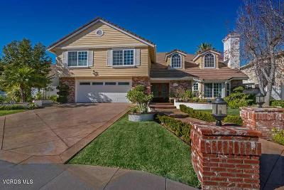 Agoura Hills Single Family Home For Sale: 5715 Willowtree Drive