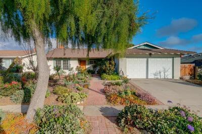 Ventura Single Family Home For Sale: 462 Princeton Avenue