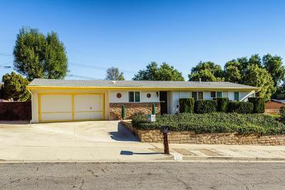 Thousand Oaks Single Family Home For Sale: 571 Westminster Street