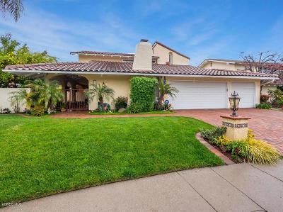 Westlake Village Single Family Home For Sale: 31702 Bainbrook Court