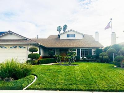Ventura Single Family Home For Sale: 6486 Stork Street