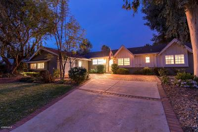 Thousand Oaks Single Family Home For Sale: 829 Brush Hill Road