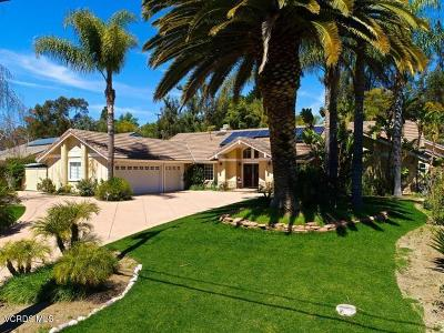 Thousand Oaks Single Family Home For Sale: 1683 Hauser Circle