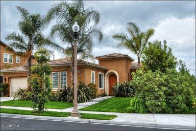 Moorpark Single Family Home For Sale: 13170 Shadow Wood Place