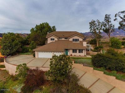 Santa Paula Single Family Home For Sale: 425 Monte Vista Drive