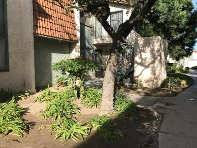 Santa Paula Condo/Townhouse For Sale: 102 East Ventura Street #C
