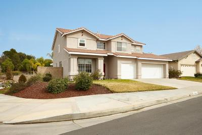 Saugus Single Family Home For Sale: 25324 Wood Dale Court
