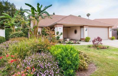 Camarillo Single Family Home For Sale: 704 Sun Grove Drive