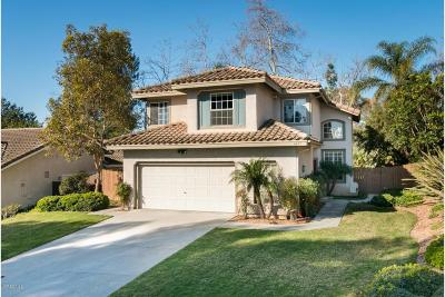 Camarillo Single Family Home For Sale: 4877 Alta Colina Road