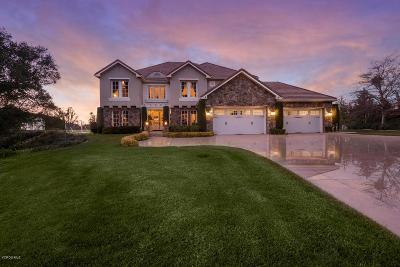 Calabasas Single Family Home For Sale: 25741 Piuma Road